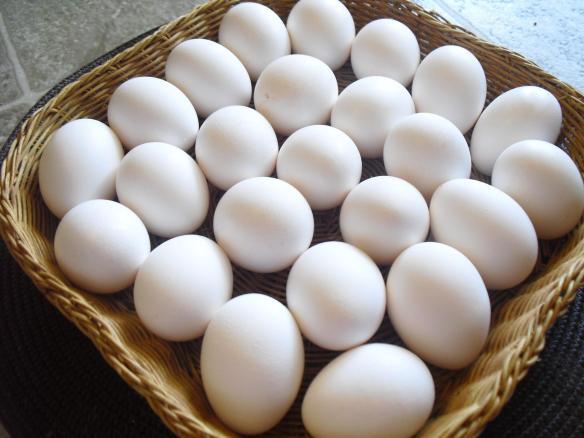 Egg Substitutes - Beth Warren the Baker